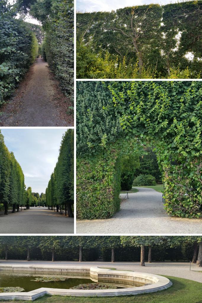 Schönbrunn Palace hedge mazes