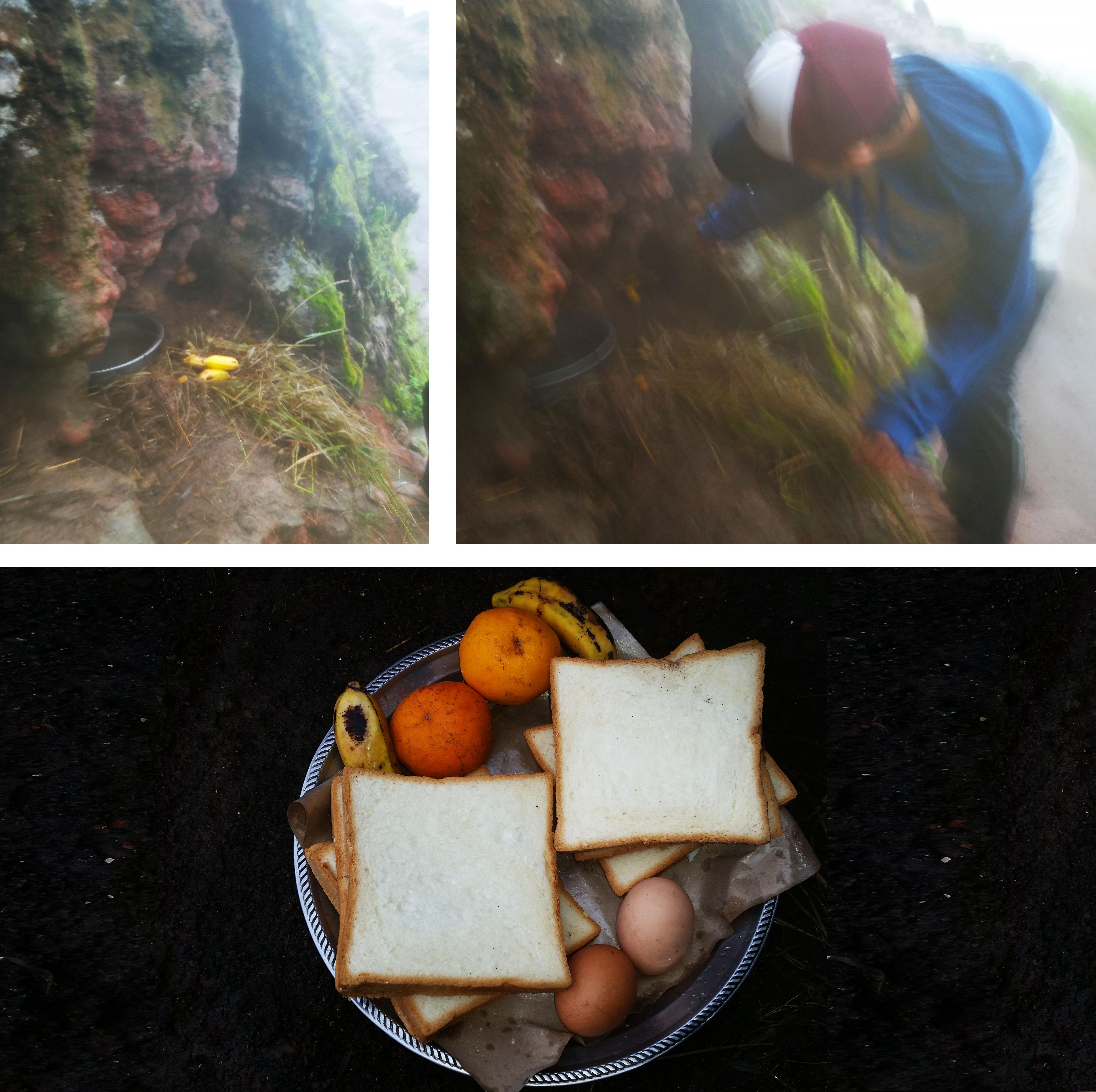 Mt. Batur bananas