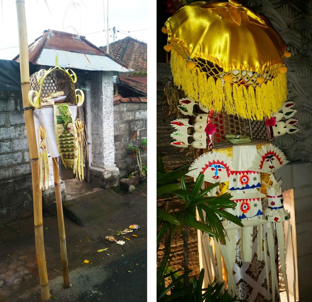 Bali palm boxes