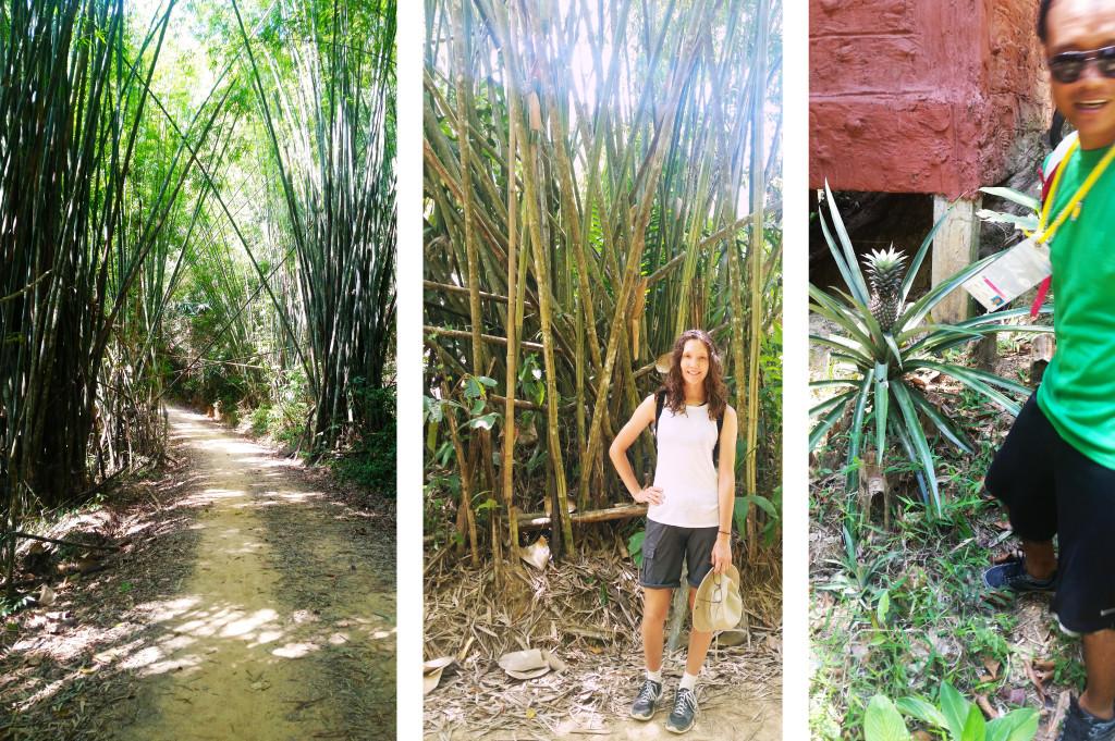 Khao Sok National Park Phuket Thailand