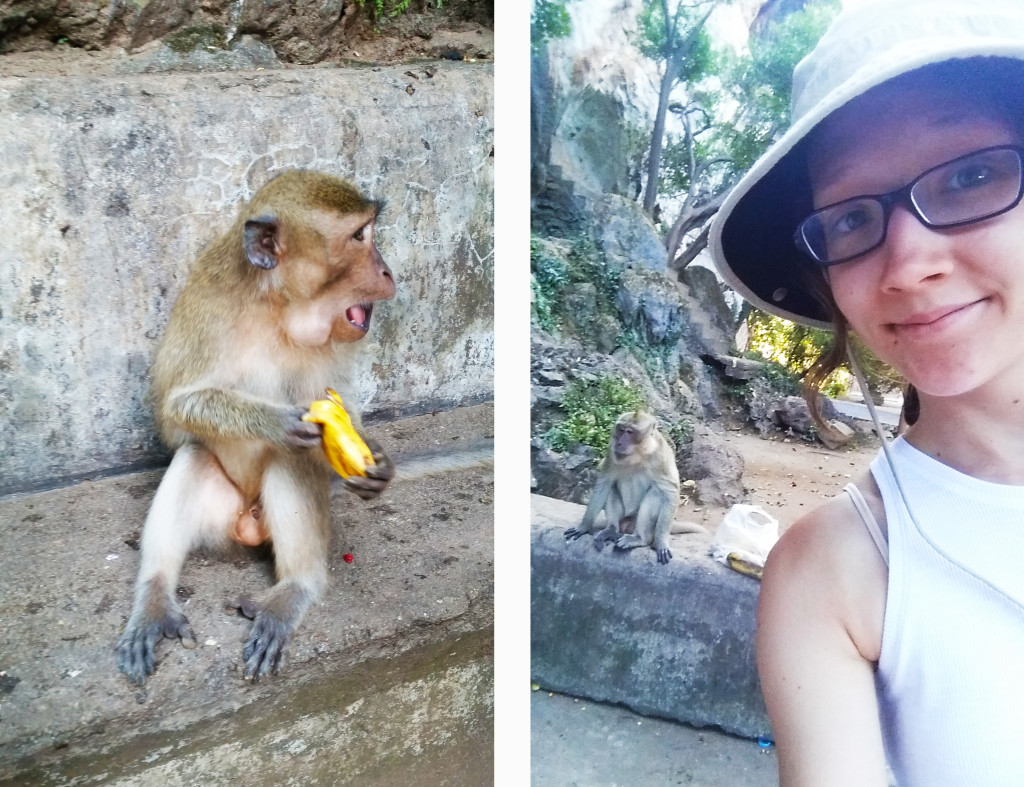 Monkey Shrine Thailand