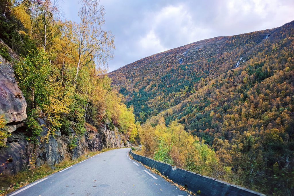 Norway drive to Fjords
