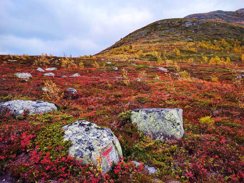 hike Norway Fjords