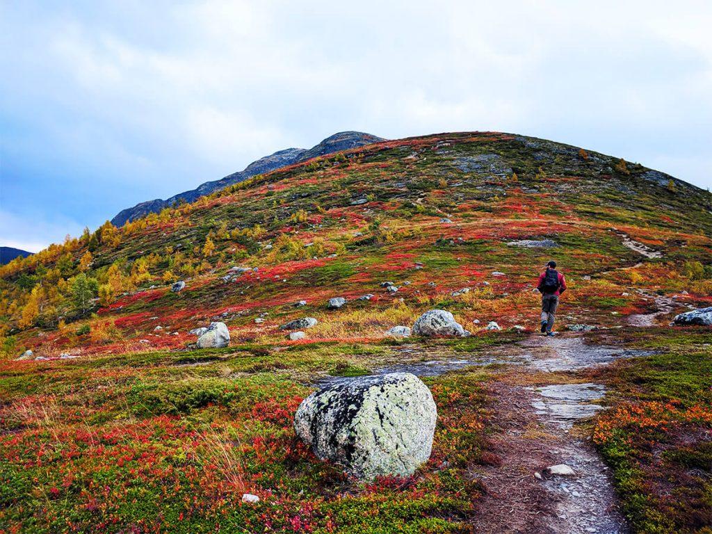 fjord hiking in norway