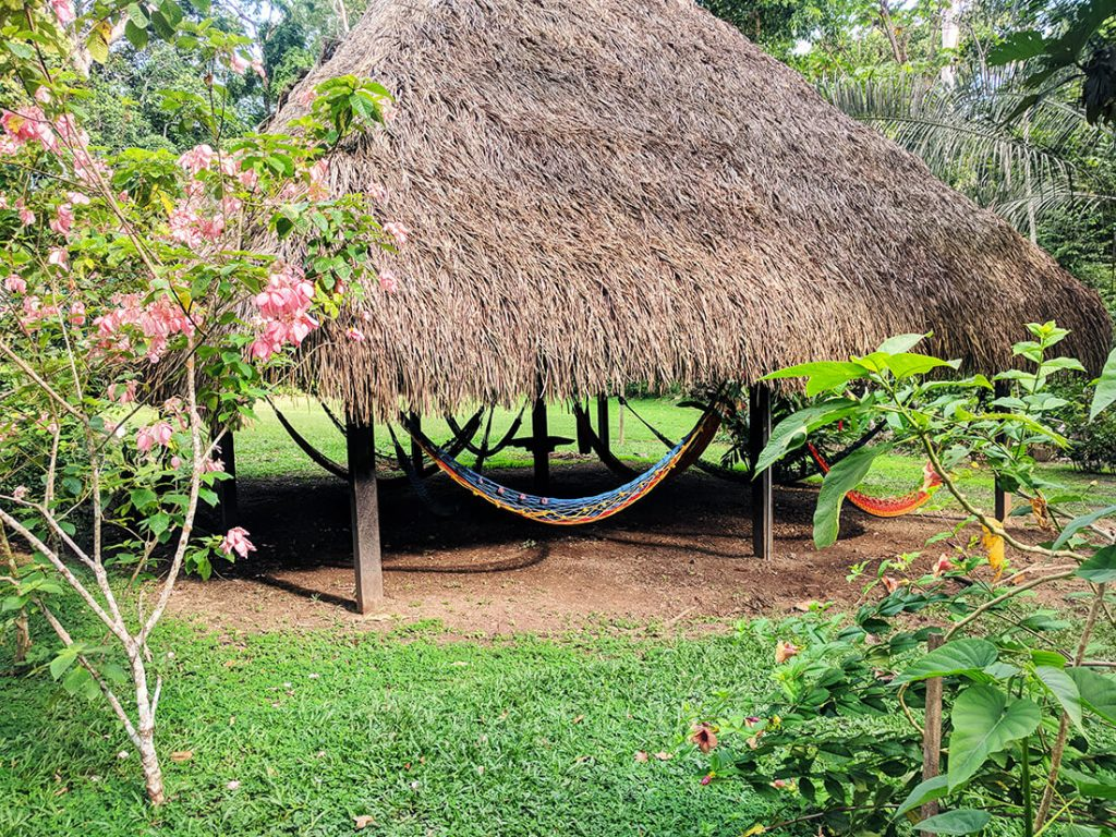 amazon planet lodge hammocks