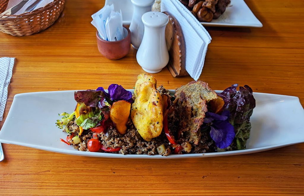 cusco vegan food