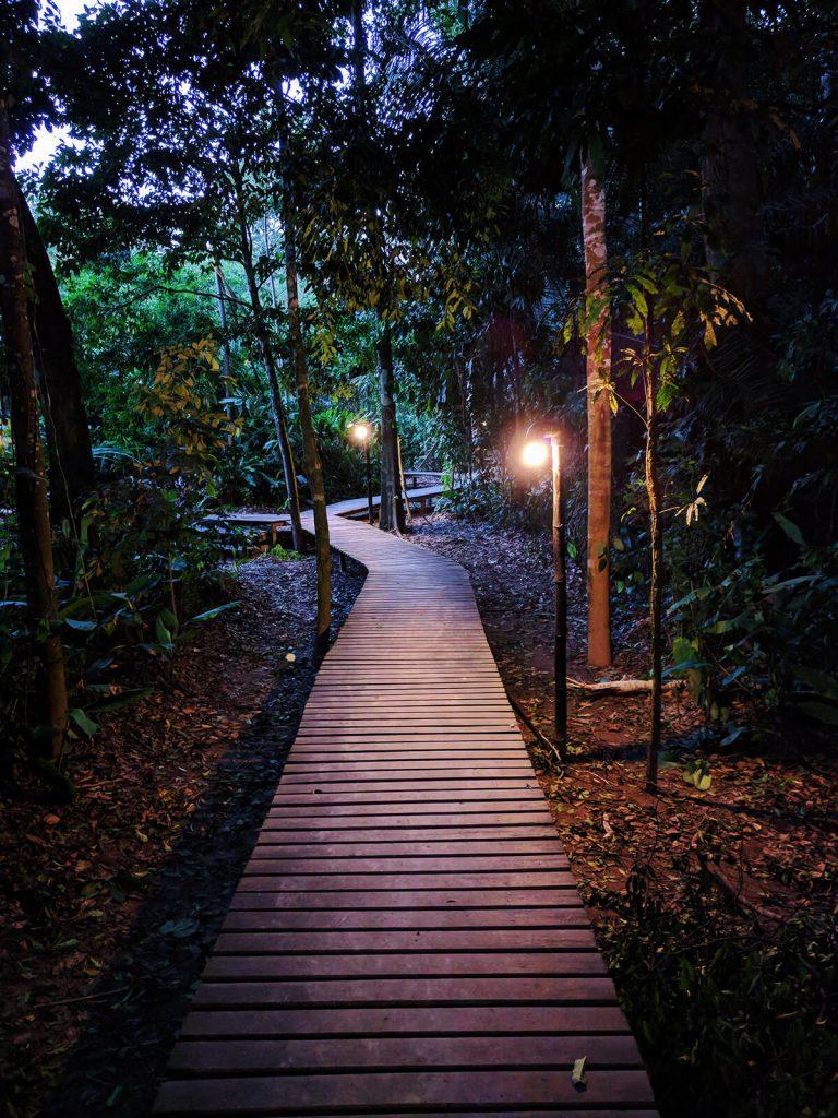 rainforest hut jungle