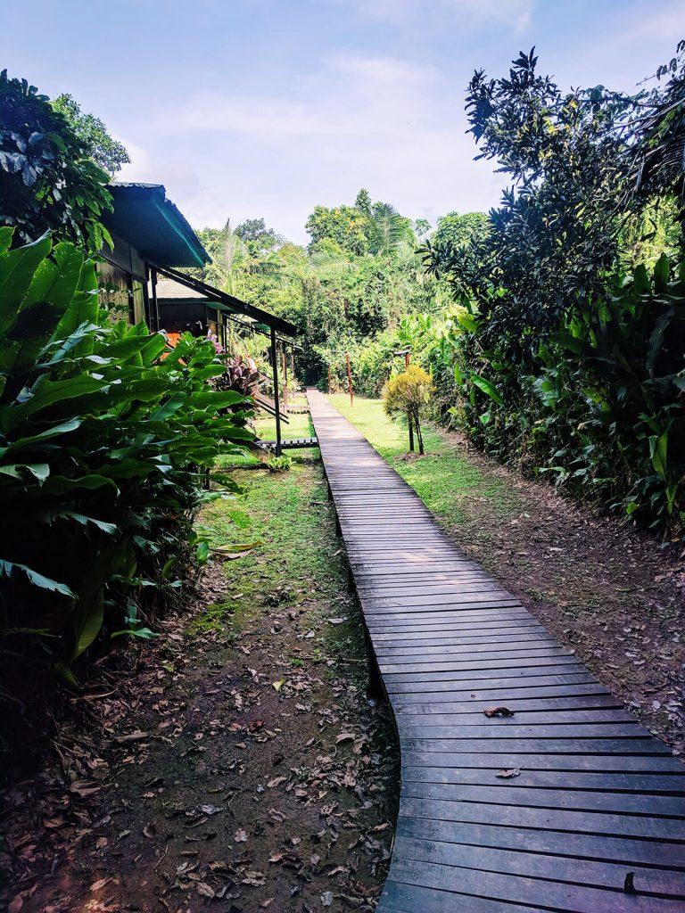 peru amazon rainforest bungalow