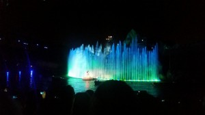Disney World Fantasmic show