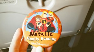 Disney world Family Reunion pin